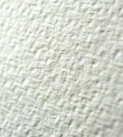tintoretto gesso paper up close