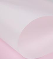 Vellum paper close up